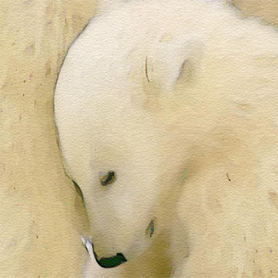 570x570 Polar Bear Family Print, Animal Print Nursery Wall Decor, Wall Art