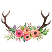 Watercolor Antlers