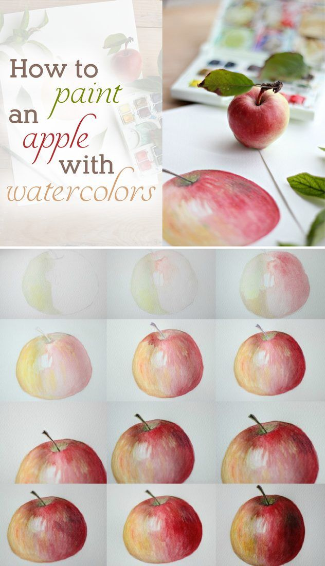 632x1102 How To Paint An Apple With Watercolors Watercolor, Apples And Crafts