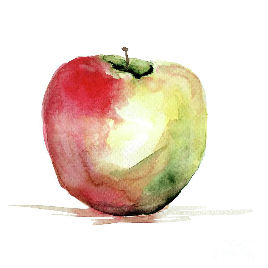 900x900 Stylized Watercolor Apple Illustration Painting By Regina Jershova