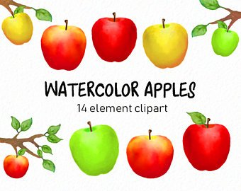 340x270 Apple Watercolor Etsy