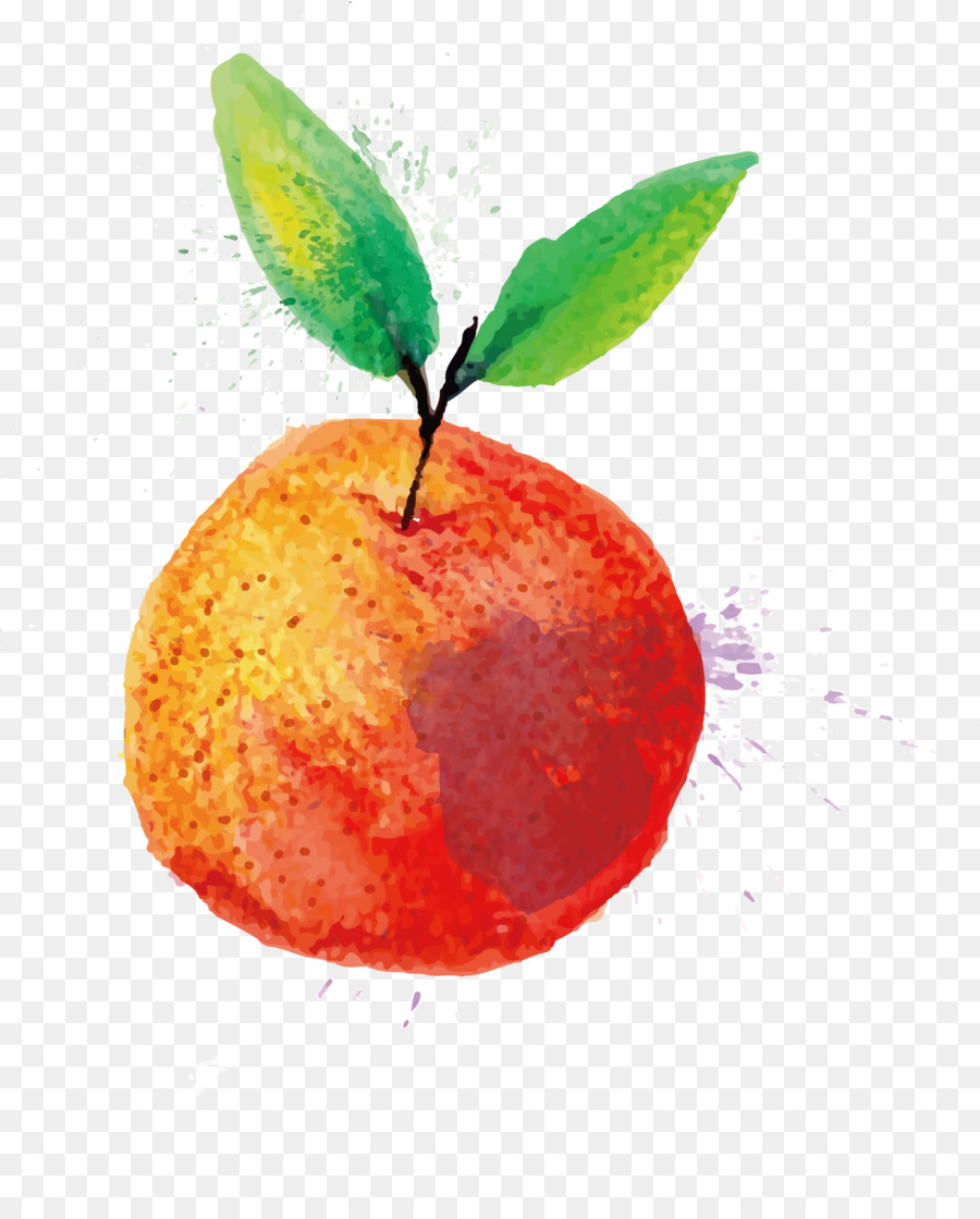 900x1120 Watercolor Painting Fruit