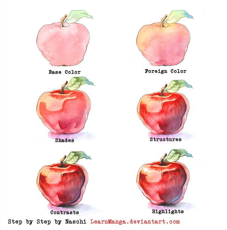 750x758 Drawn Apple Watercolour