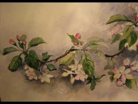 480x360 Blooming Apple Tree Watercolor By Olga Morgun.wmv