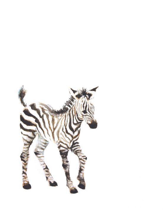 570x738 Baby Zebra Watercolor Print Animal Painting