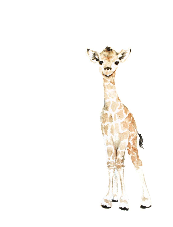 1145x1500 Giraffe Art Print