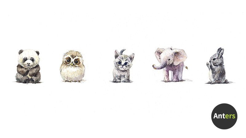 800x450 Painting Baby Animals With Watercolor 1