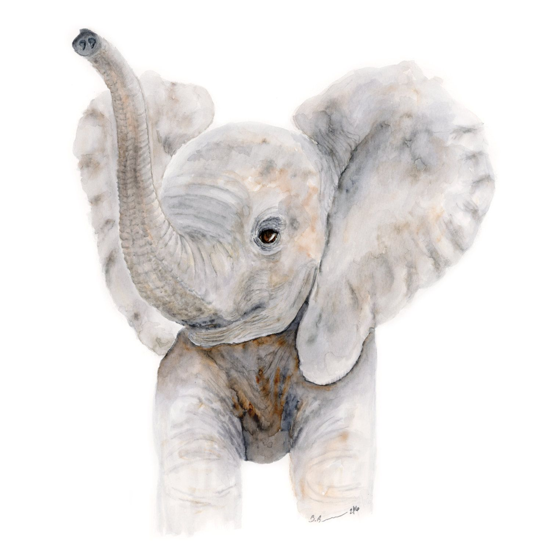 1500x1500 Baby Elephant Watercolor