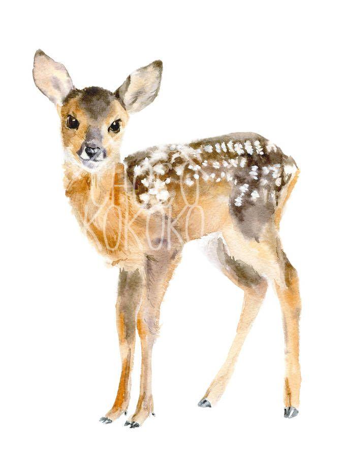 675x900 Baby Deer Fine Art Print Baby Deer, Giclee Print And Printing