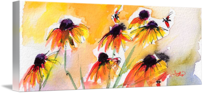 650x296 Flower Panorama Black Eyes Susan Watercolor By Ginette Callaway