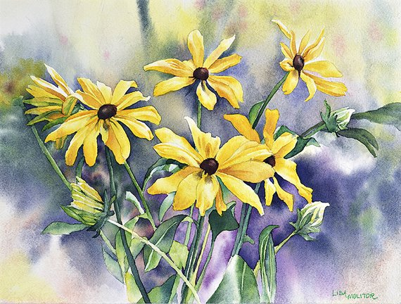 570x432 Black Eyed Susan Flowers Black Eyed Susan Watercolor Black Etsy