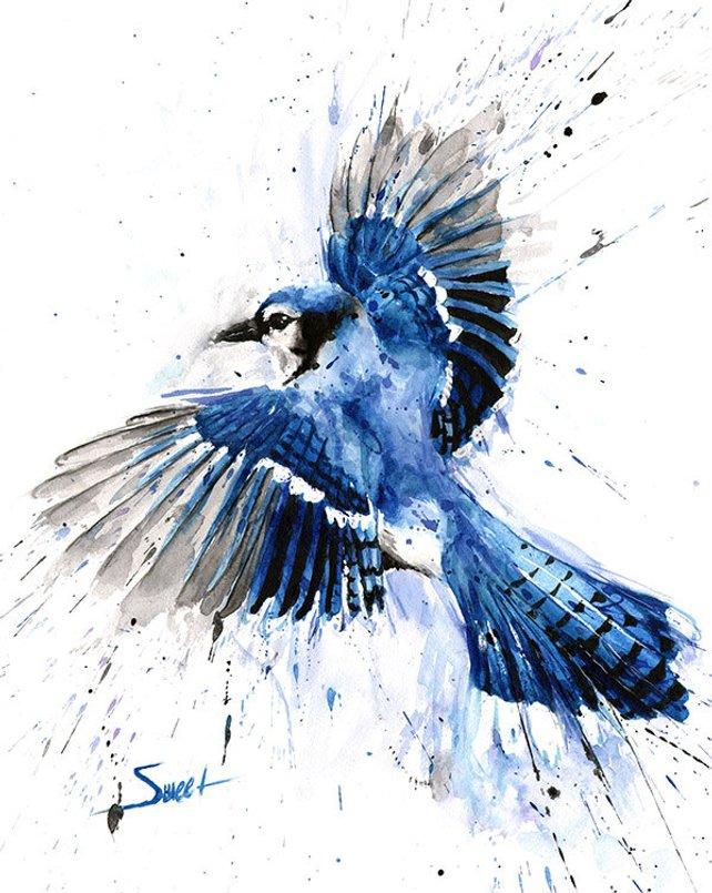642x805 Blue Jay Painting Watercolor Blue Jay Blue Jay Art Bird Etsy