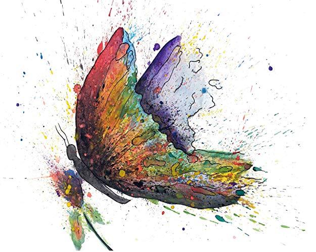 625x500 Canvas Wall Art Butterflies Butterfly Wall Art