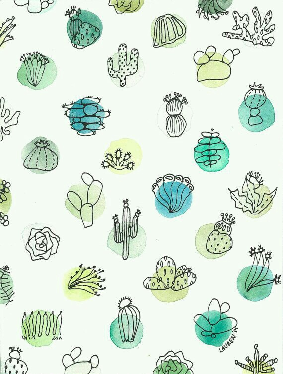 570x755 Watercolor Cactus Shared By Anne Rink On We Heart It