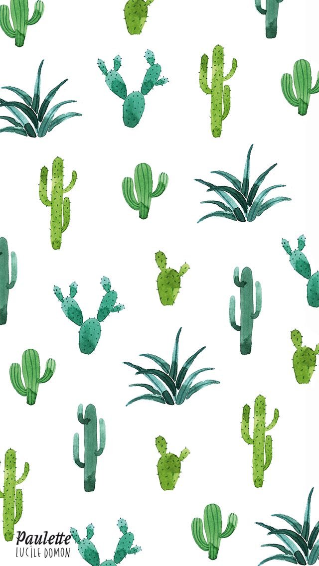 640x1136 Cactus Iphone Wallpaper Wallpaper In 2018 Cacti