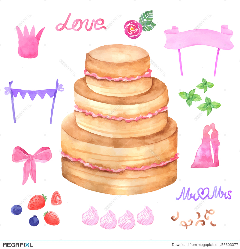 800x830 Hand Painted Watercolor Cake. Vector Illustration. Illustration