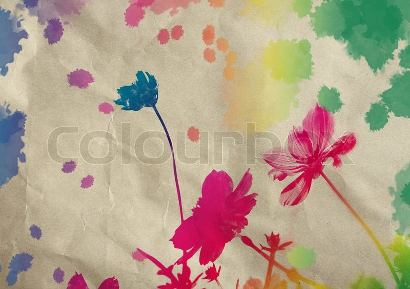 800x565 Cosmos Flower With Watercolor Splash On Grunge Paper Background