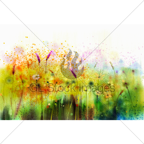 500x500 Abstract Watercolor Painting Purple Cosmos Flower Gl Stock Images