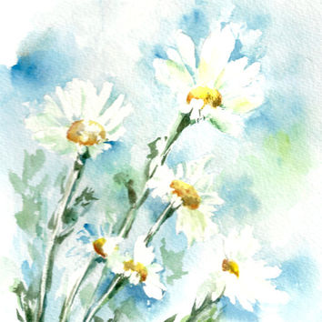 354x354 Daisy Flowers Art Print, Watercolor From Canotstopprints On Etsy