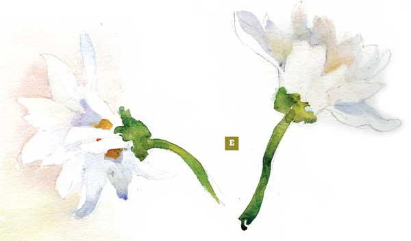 600x352 How To Paint A Watercolor Floral Still Life Step By Step Artist