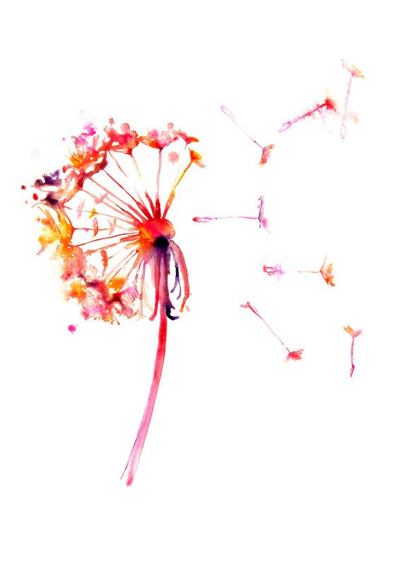 570x806 Dandelion Wall Poster Nature Watercolor Poster By Watercolormary