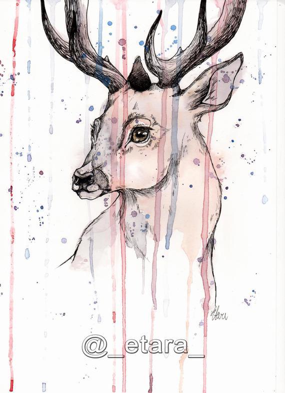 570x785 Original Deer Painting Deer Head Art Watercolor Deer Etsy
