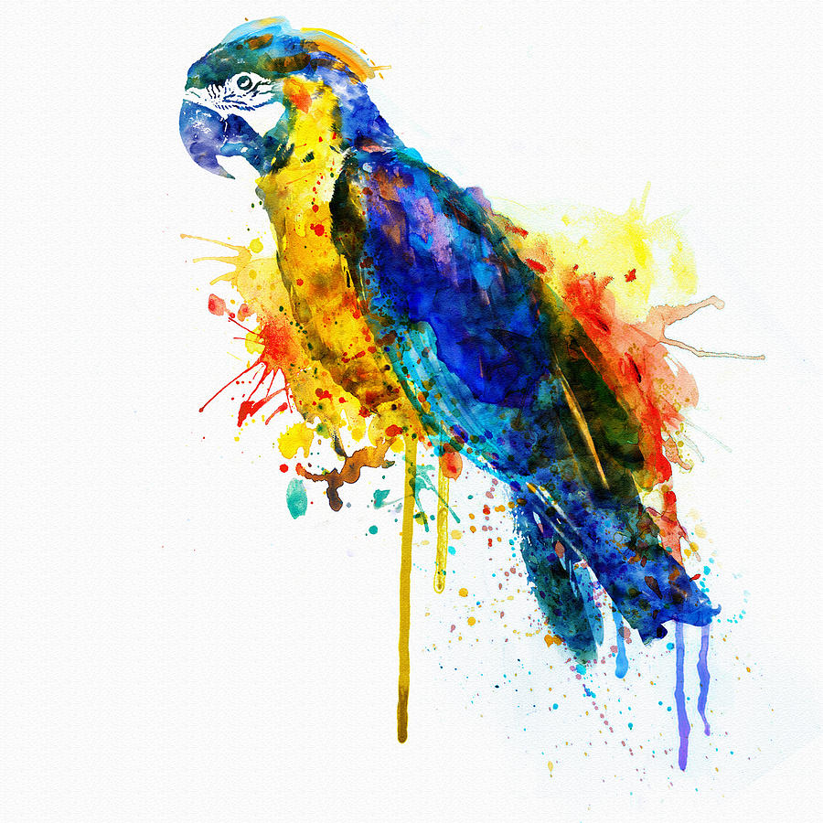 900x900 Parrot Watercolor Painting By Marian Voicu