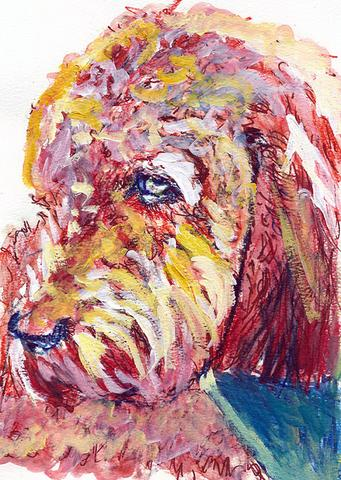 341x480 Poodle Painting,dog Art Print, Poodle Owner Gift,watercolor Dog