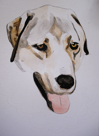 350x477 Mixed Media Tutorial Learn How To Combine Colored Pencils And