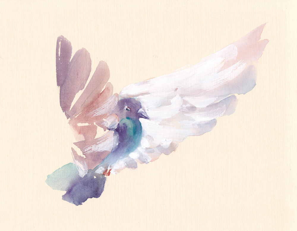 1000x779 Dove Watercolour Amethyst Tiger