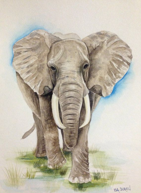 Watercolor Elephant Art
