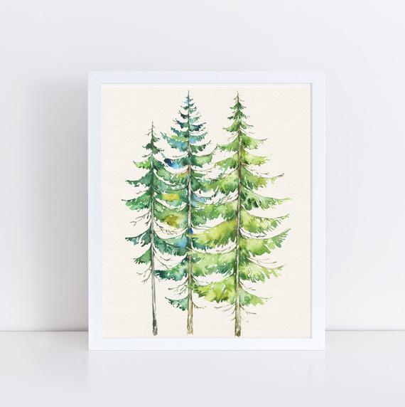570x572 Watercolor Evergreen Trees Printable Art Print Watercolor Etsy