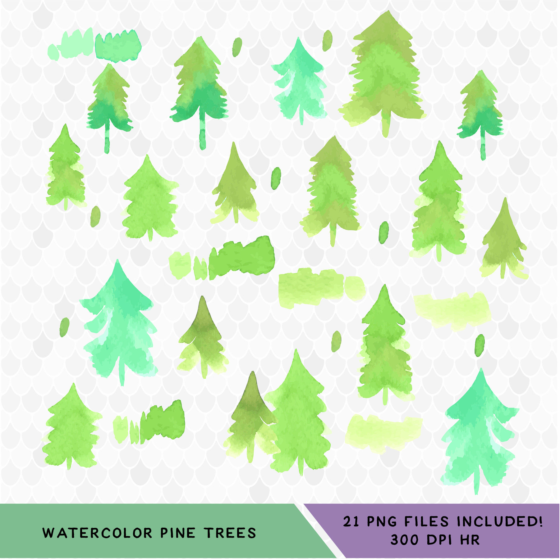 1802x1801 Watercolor Pine Trees Fir Trees Evergreen Trees Watercolor Etsy