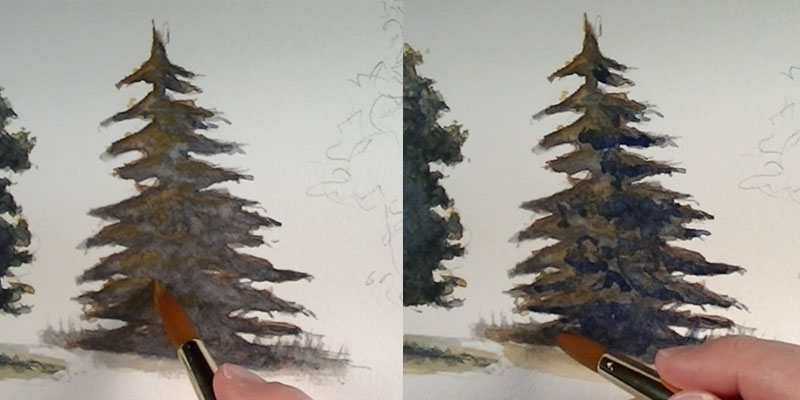 800x400 How To Paint Trees With Watercolor