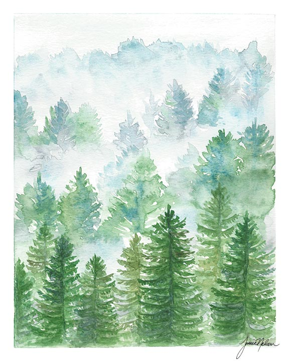 576x720 Janice Nelson Designs Evergreen Trees Print