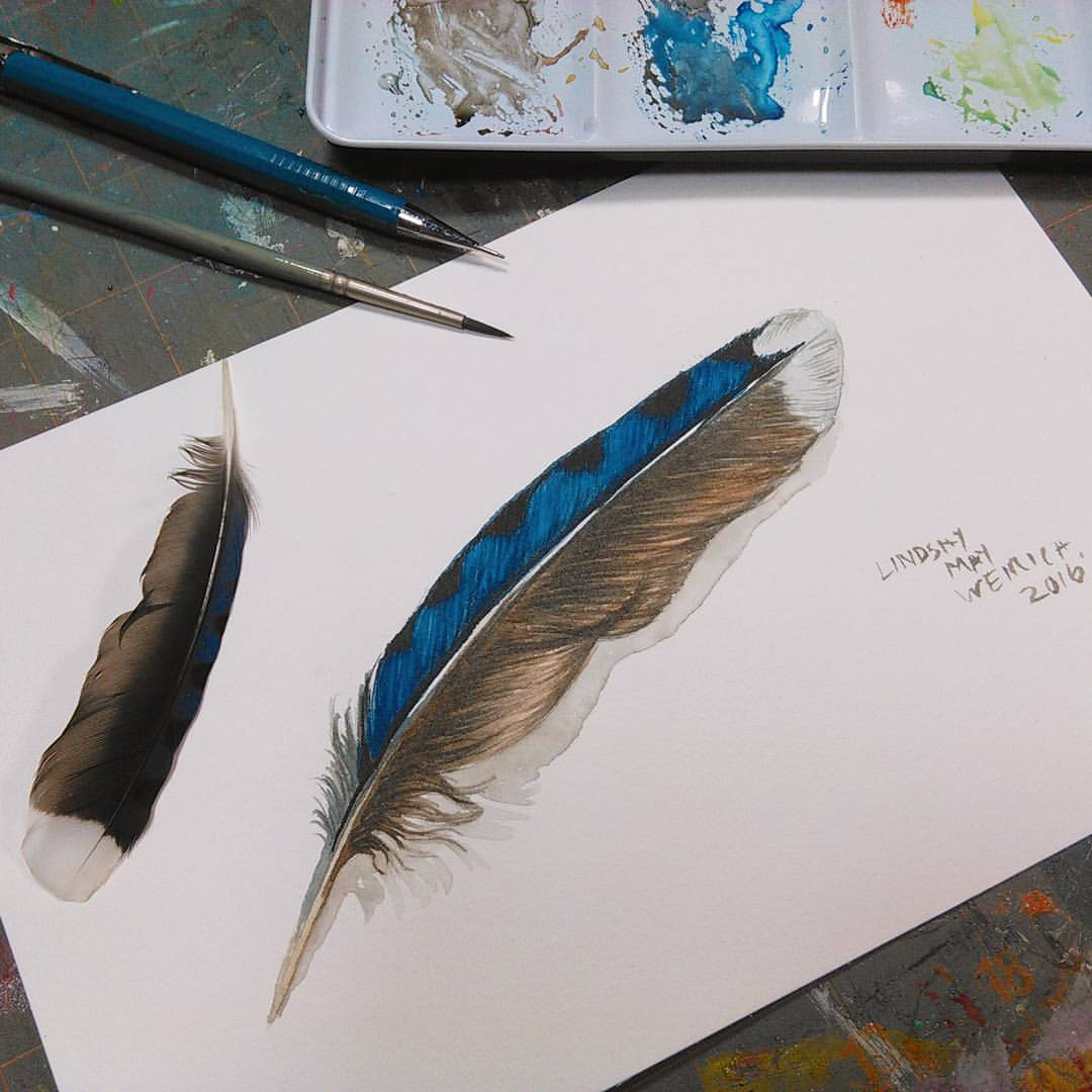 1080x1080 Learn To Paint A Realistic Feather In Watercolor (Free Tutorial