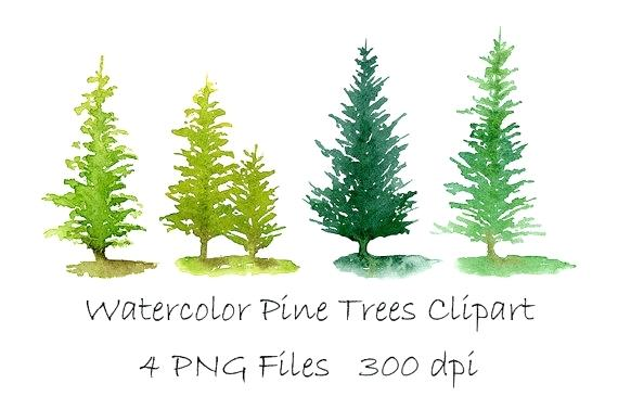 570x377 Painted Pine Trees Three Green Stylized Pine Spruce Or Fir Trees