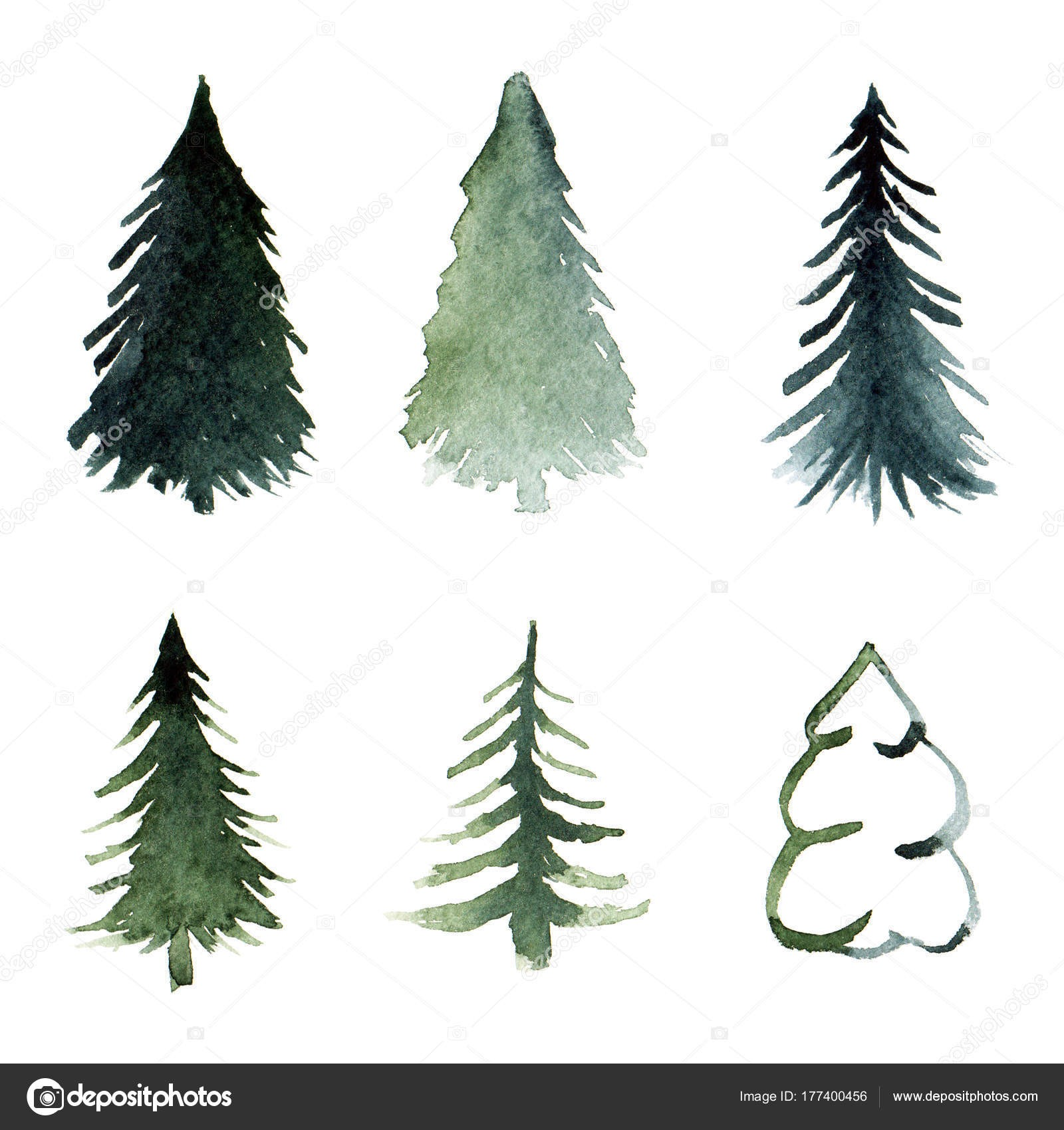 1600x1700 Pine Tree Drawing Inspirationa Free Hand Drawing Fir Tree