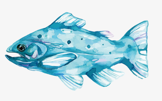 650x406 Vector Watercolor Fish, Watercolor Vector, Fish Vector, Watercolor