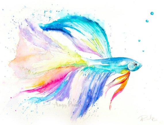 570x436 Betta Fish Watercolor Art Original Artwork Original Etsy