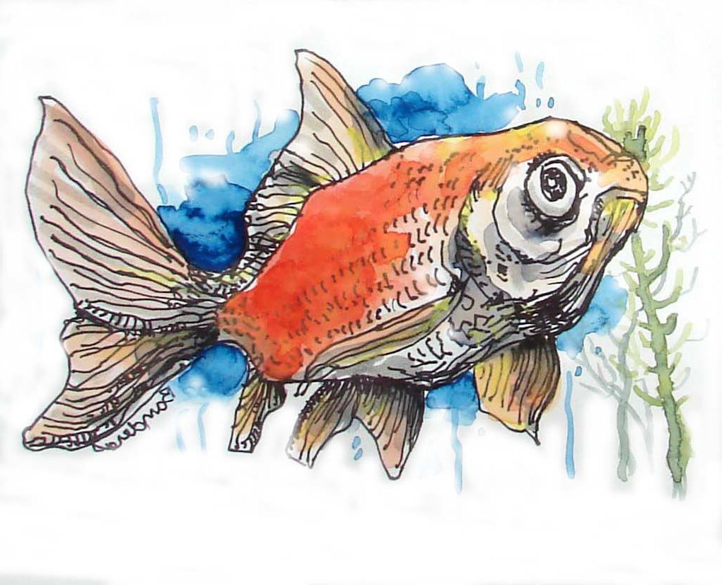 1021x827 Painting Of A Fish 7th8th Grade Watercolor Fish Paintings