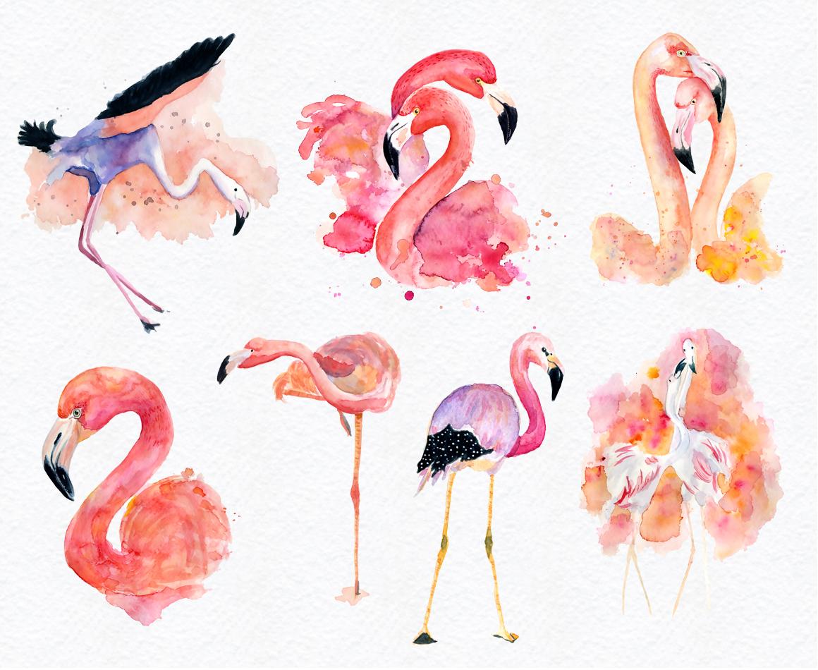 Watercolor Flamingo Clipart at GetDrawings | Free download