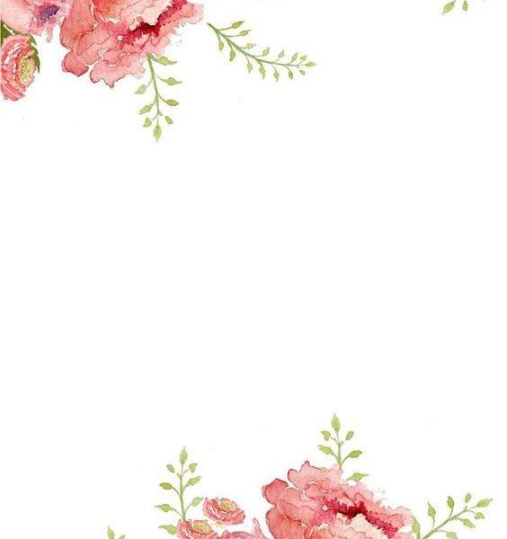 564x600 Watercolor Flower Border Flower Beauty Wallpaper