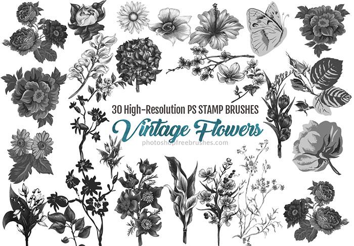 Watercolor Flower Brush at GetDrawings com | Free for