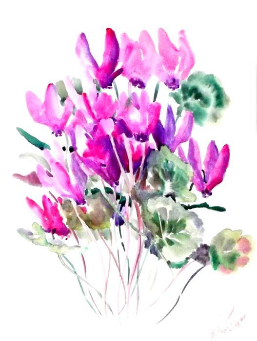 527x700 Cyclamens (Purple, Pink Flowers) Suren Nersisyan