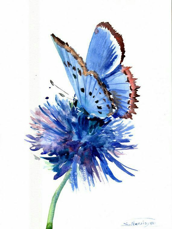 570x758 Stunning Watercolor Flower And Butterfly Watercolor