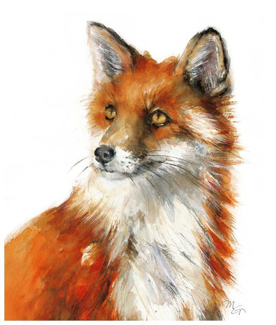 570x670 Fox Watercolor Archival Print Mira Guerquin Watercolors