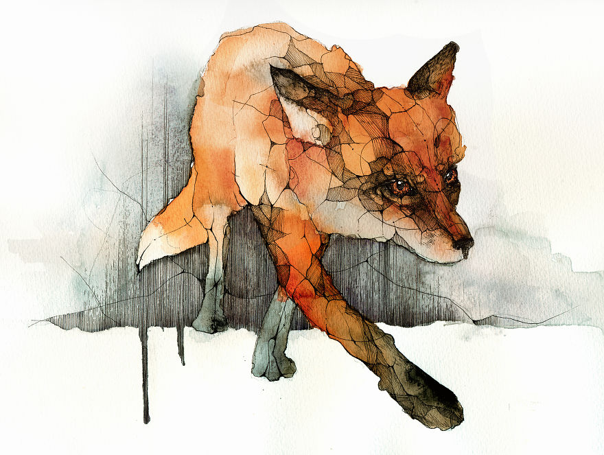 880x663 I Paint Foxes With Ink And Watercolor For Everyone Who Loves Them