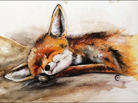 480x360 Watercolor Baby Fox Painting Full Video Demonstration