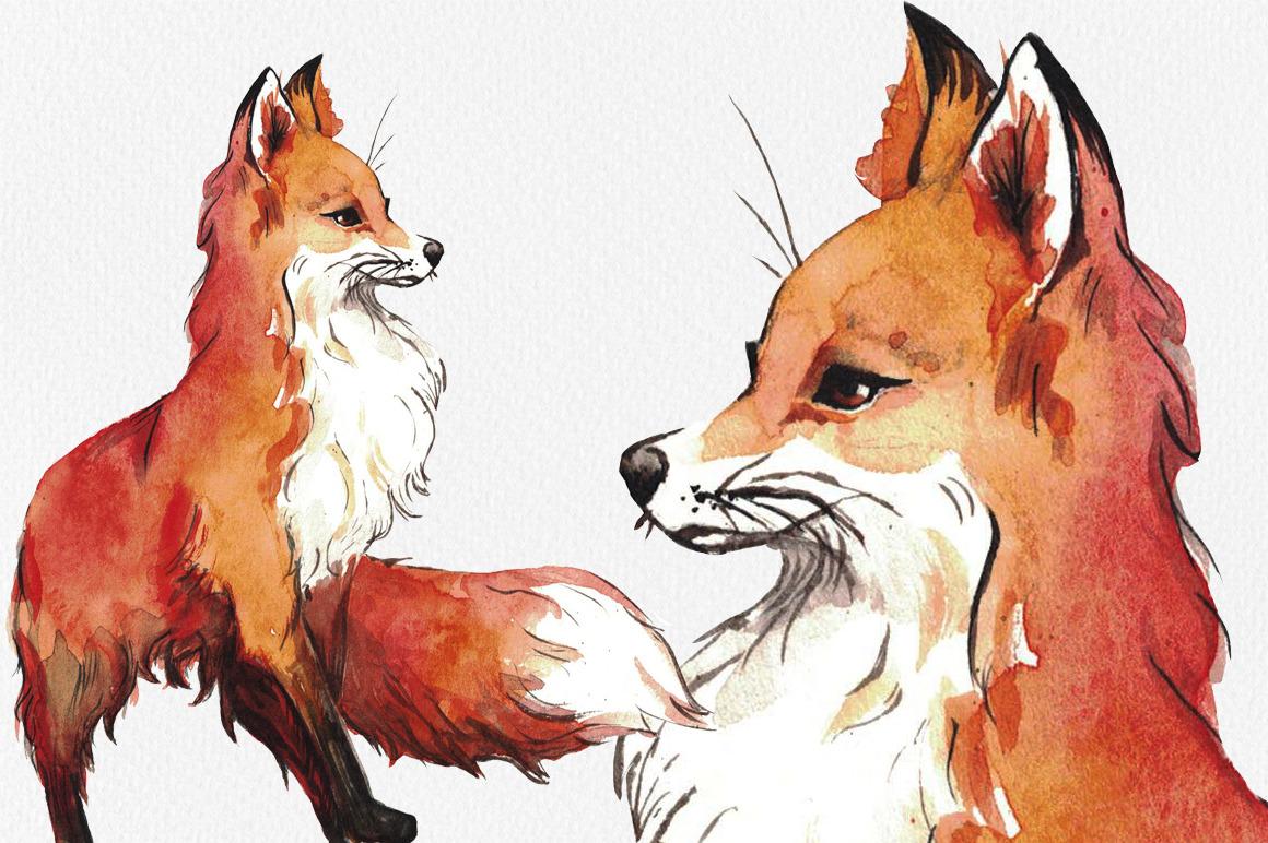 1160x772 Watercolor Fox By Kiraartshop